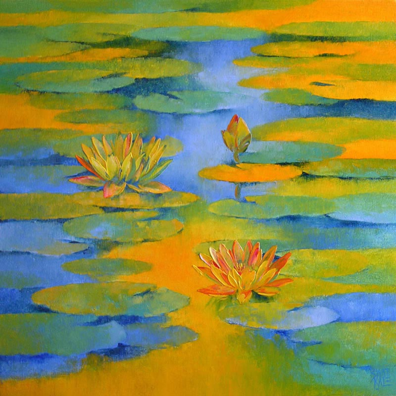 Water lilies 1 5970
