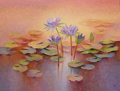 Water Lilies  18 5984