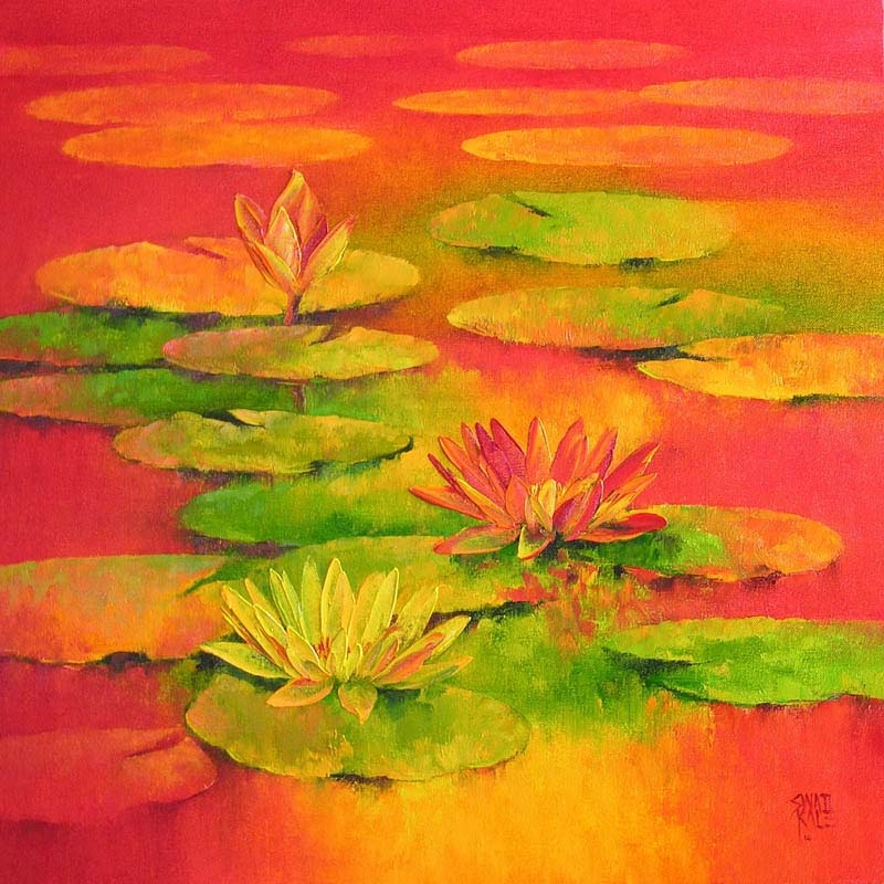 Water Lilies  5 5991