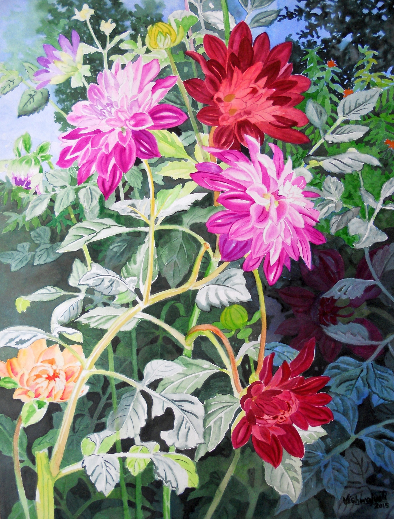 Colorful Dahlias 4 7215