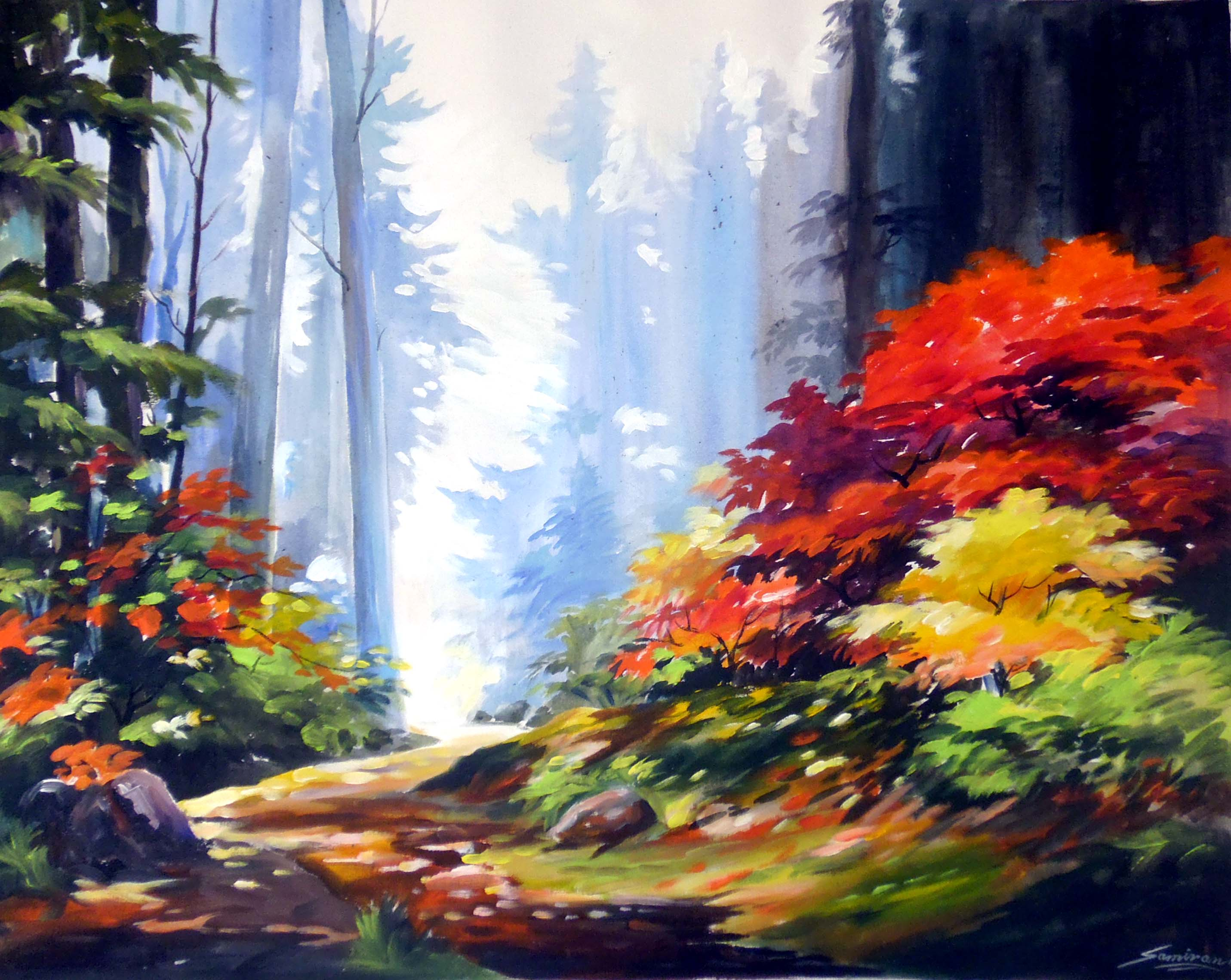 Beauty of Mountain Forest 7486