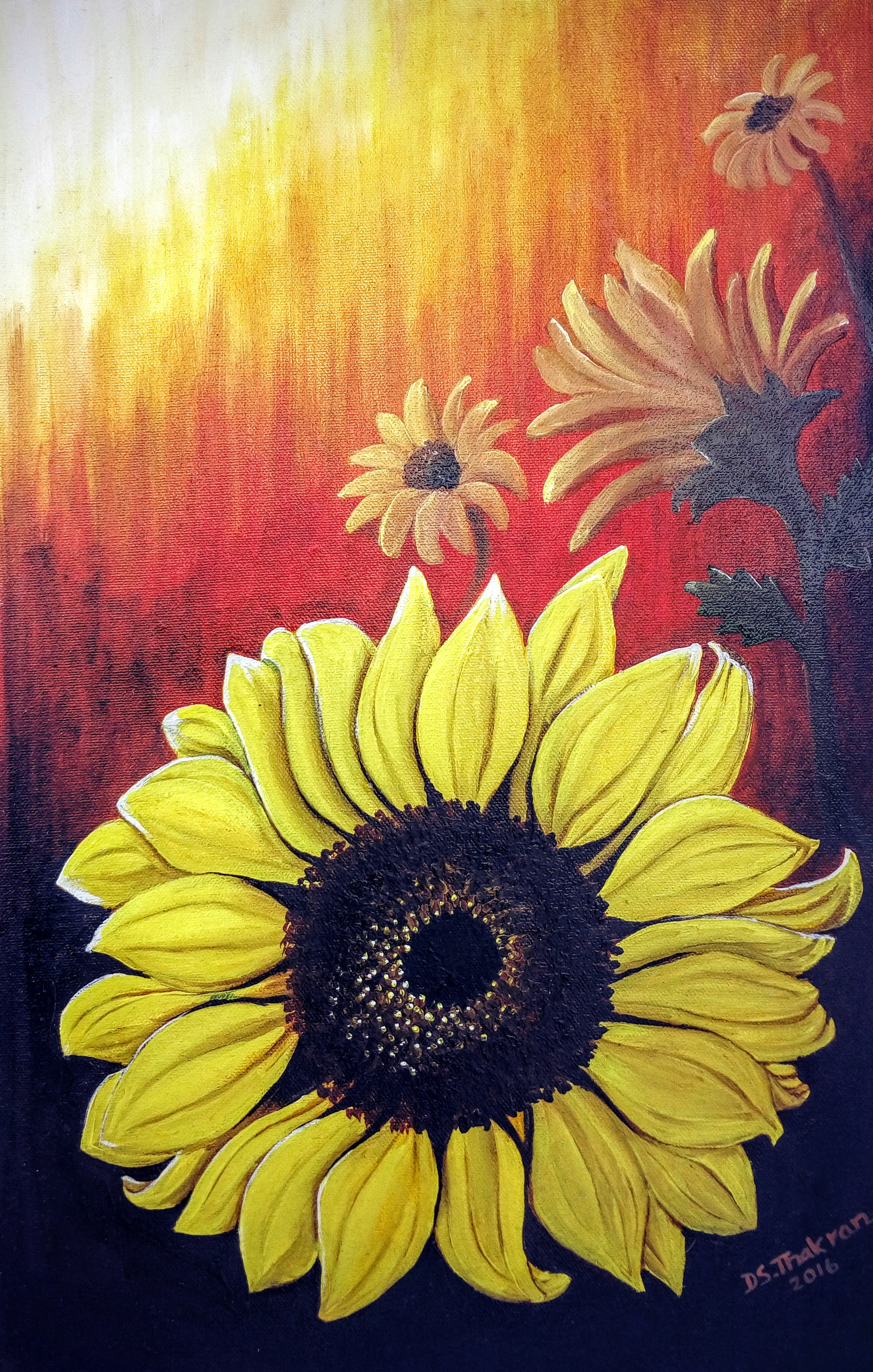 Sunflower2 9546