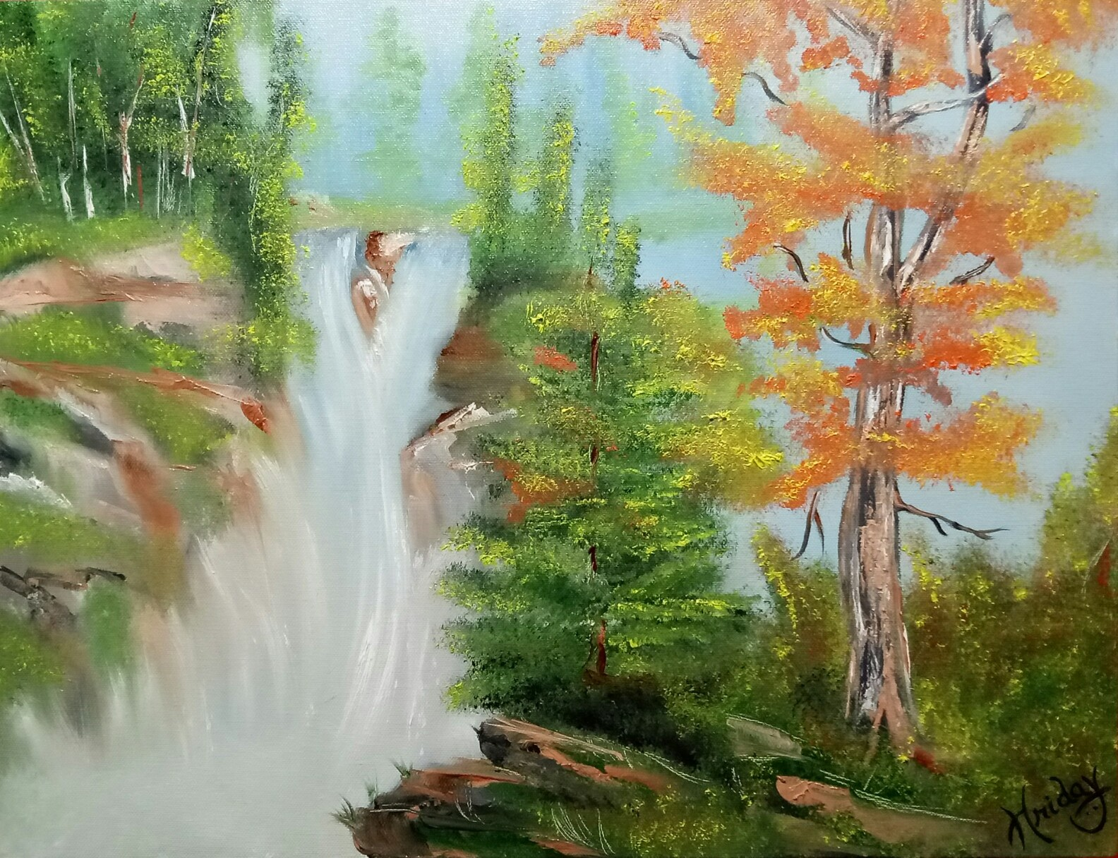 Forest waterfall 10330