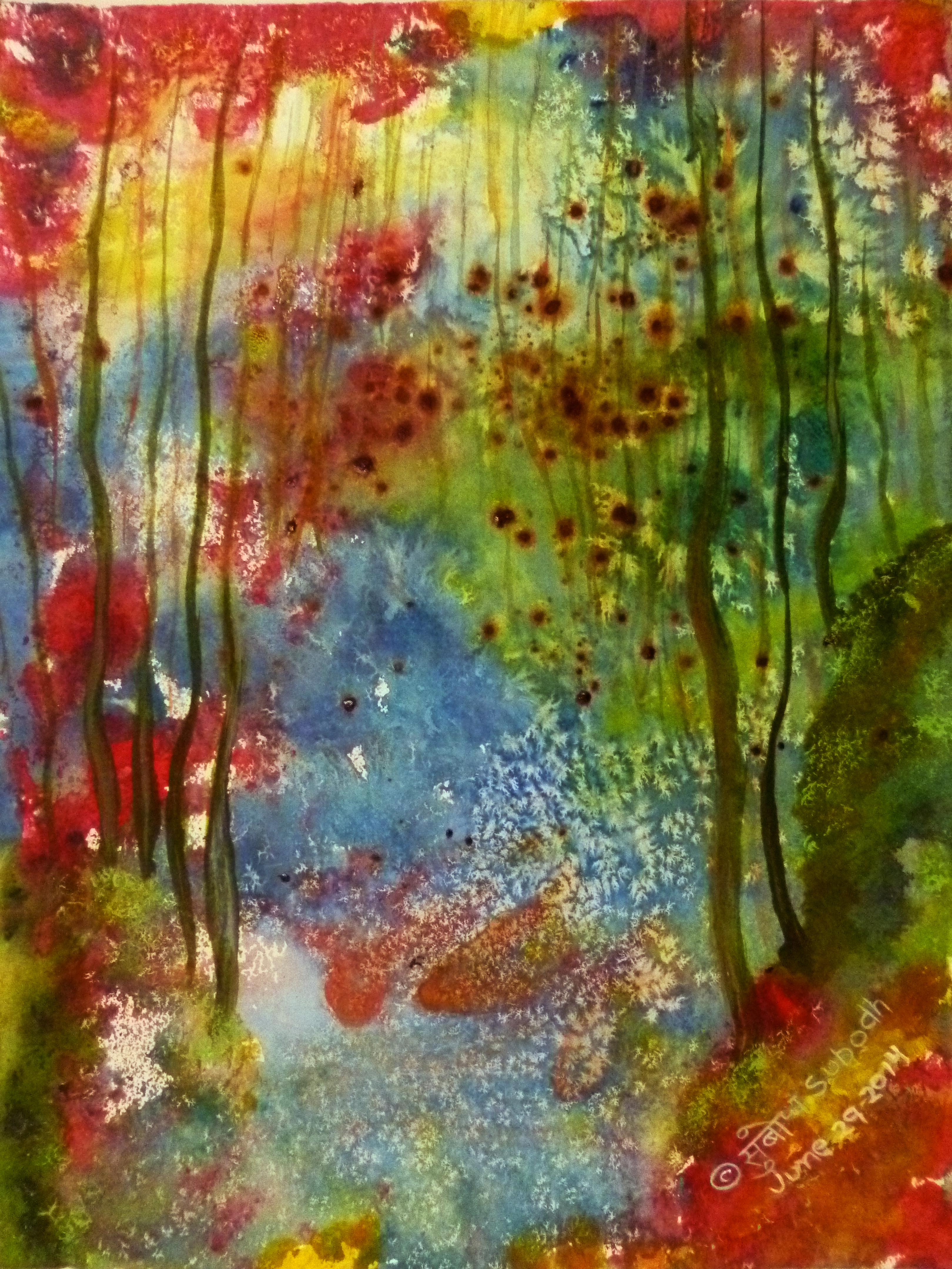 Enchanted Forest 10580