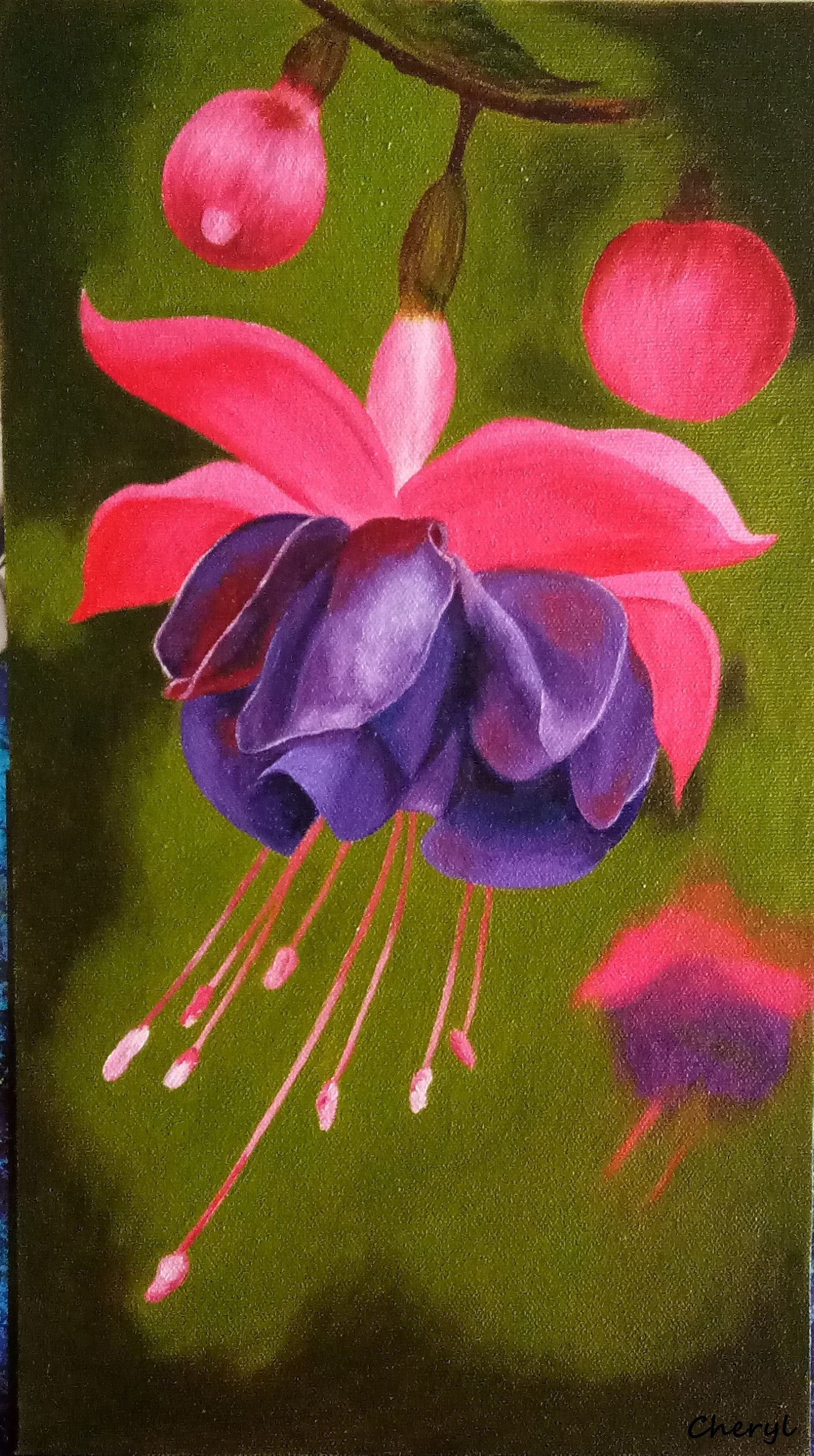 Buy painting fuchsia artwork no 12911 by indian artist cheryl monis the fuchsia is among the most beautiful flowers of india with its striking two tone color it is every gardeners delight here is an oil painting of the izmirmasajfo